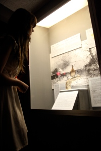 Singing a lullaby to the passenger pigeon at the Nova Scotia Museum of Natural History (Nocturne, 2012). Photo by Leigh Kirkpatrick.